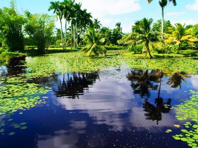 Kuba - Rezerwat Biosfery, tropical sun