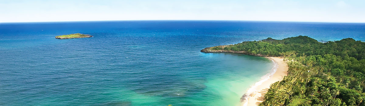 Wieloryby w zatoce Samana - Dominikana