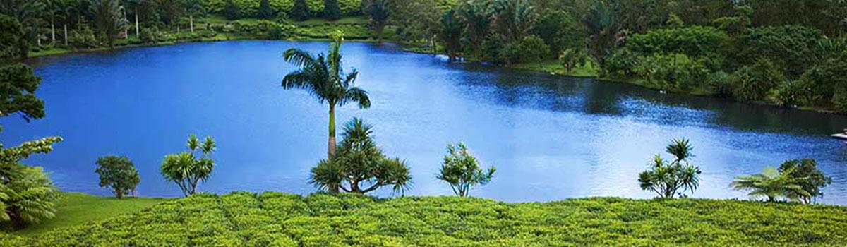 Perły Mauritiusa - Mauritius
