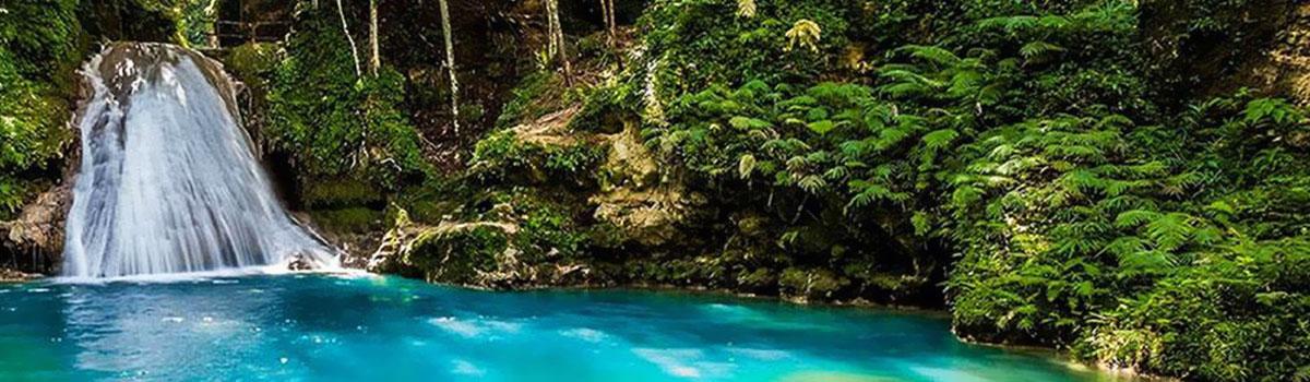 Czarna rzeka i przyroda Jamajki