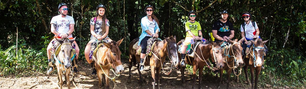 Samana All Inclusive- park Los Haitises i El Limon - Dominikana