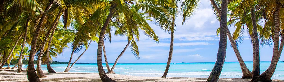 Dwupak Saona Luxury VIP i Adventure Dominicana + Playa Macao