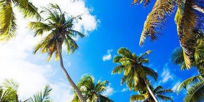 Tropical Sun Tours - Wycieczki Dominikana