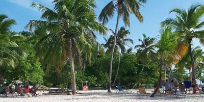 Tropical Sun Tours - Półwysep Samana - atrakcje na każdym kroku
