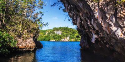 Tropical Sun Tours - W samym sercu tropików – wycieczka po regionie Samana
