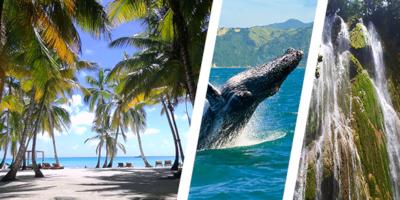 Dominikana - wycieczka TRÓJPAK SEZONOWY!